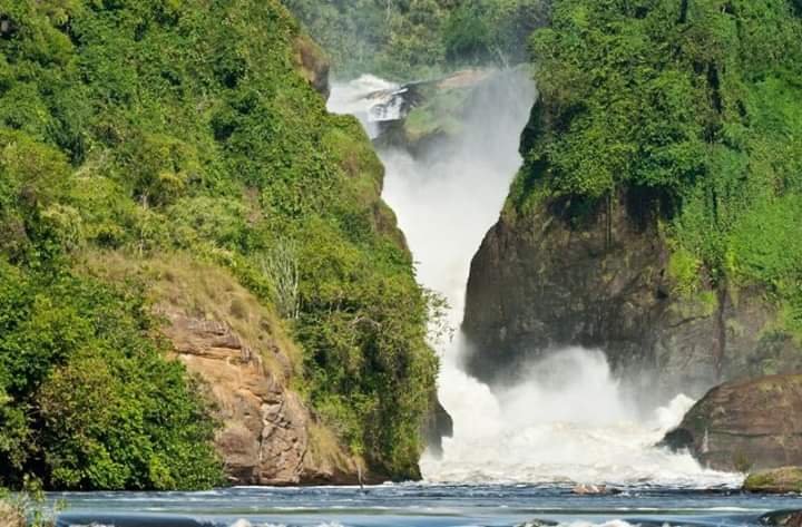 THE URGENCY FOR PROTECTING AND CONSERVING THE MURCHISON AND BUDONGO ECOSYSTEMS